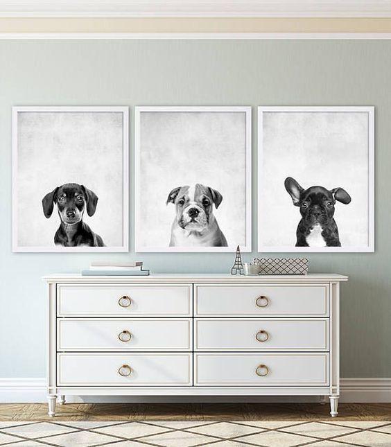 dodatki z motywem psa – obrazy